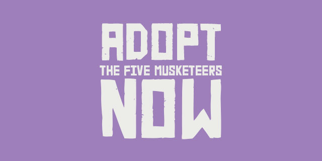 adopt-five-musketeers